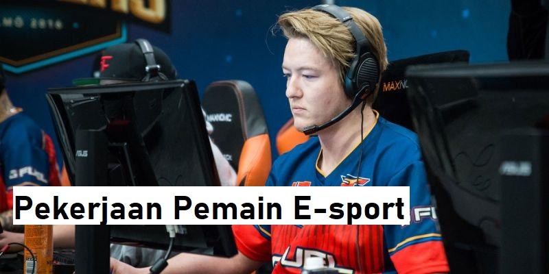 Pekerjaan Pemain E-sport